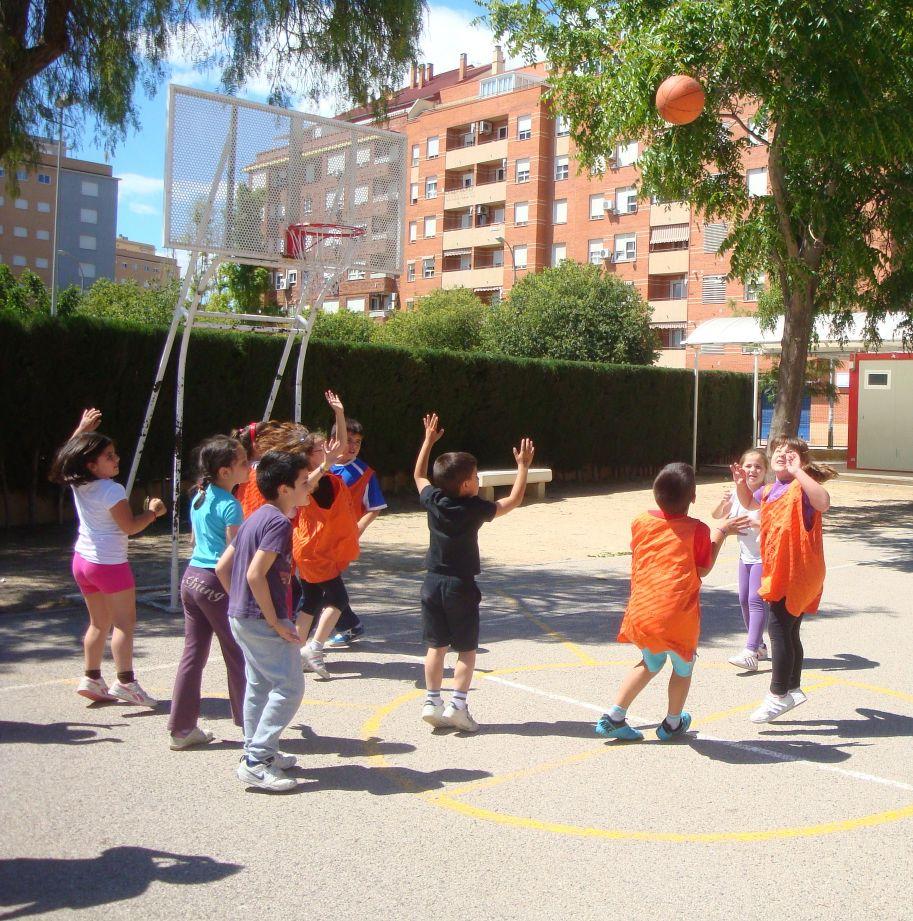 basket-1a