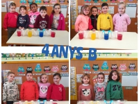 1_4-ANYS-B
