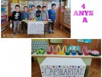4-ANYS-A-2