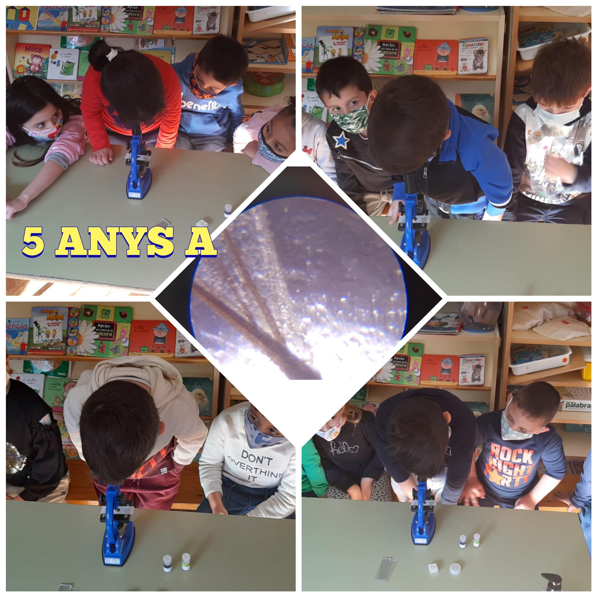 5-ANYS-A-2