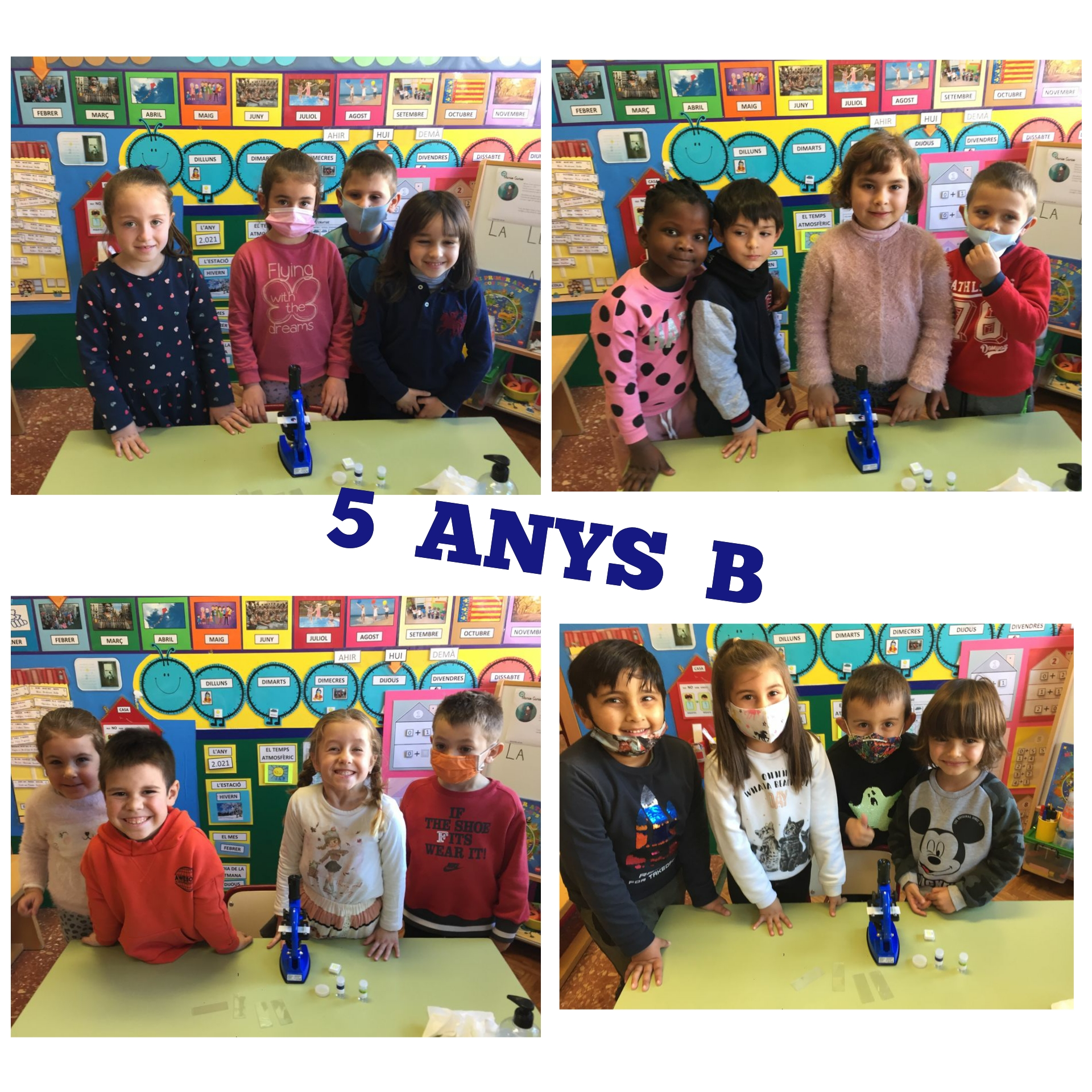 5-ANYS-B-2