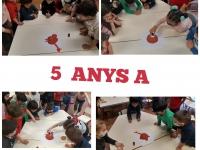 5-ANYS-A-3