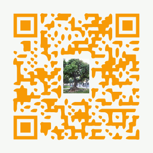 qr-web-sanchis-gr