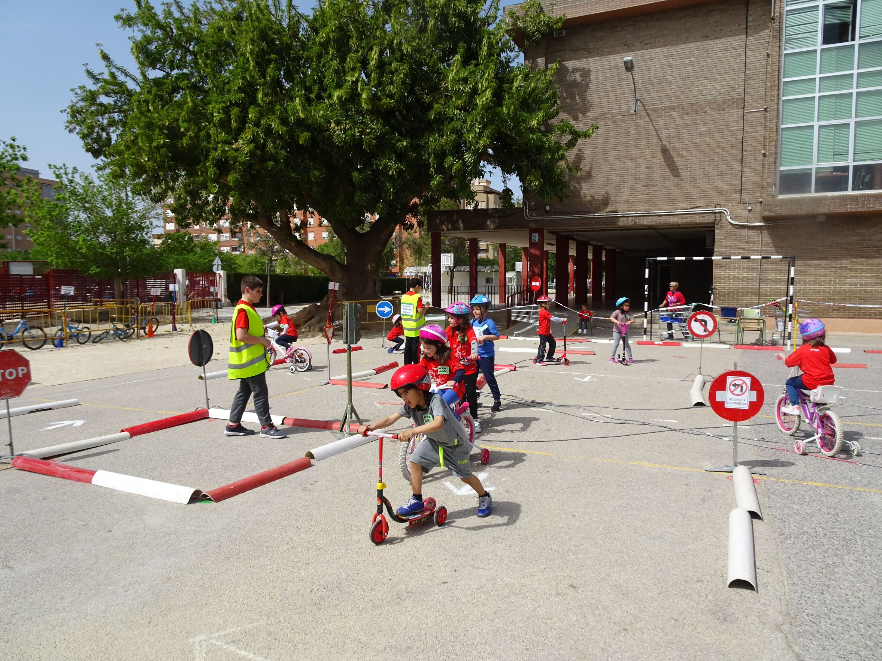 EDVIAL5 ANYS PIP  (6)