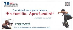 2014-Profundizando-valenciano
